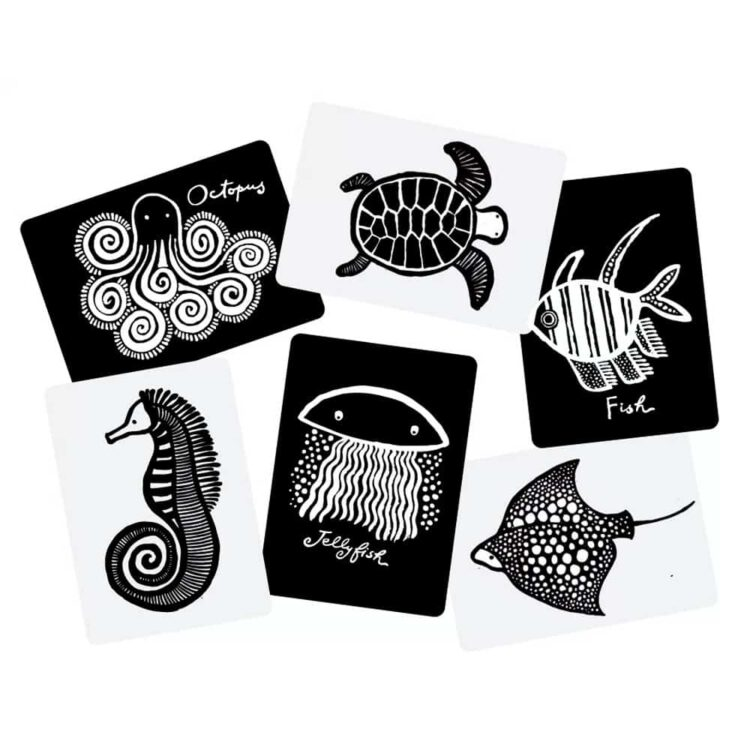Art Cards Wee Gallery for Baby – Sea Animals